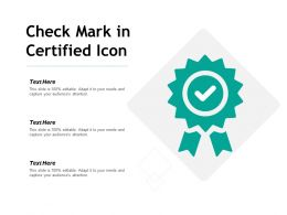 Check Mark In Certified Icon