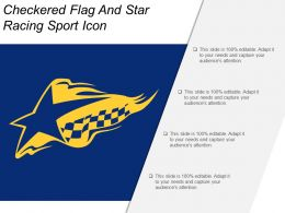 Checkered Flag And Star Racing Sport Icon