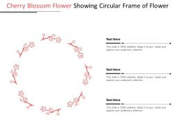 Cherry Blossom Flower Showing Circular Frame Of Flower