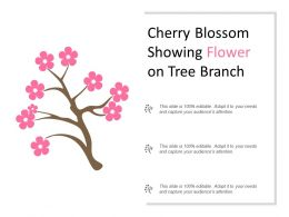 Cherry Blossom Showing Flower On Tree Branch