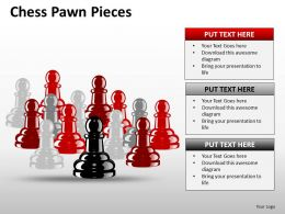 Chess Pawn Pieces ppt 10