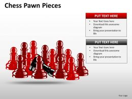 Chess Pawn Pieces ppt 11