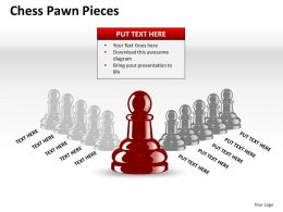 Chess Pawn Pieces ppt 12