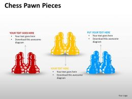Chess Pawn Pieces ppt 13