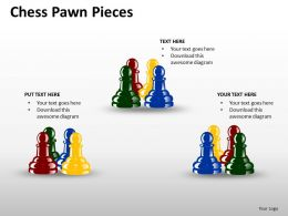 Chess Pawn Pieces ppt 14
