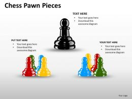 Chess Pawn Pieces ppt 15