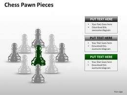 Chess Pawn Pieces ppt 16