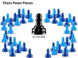 Chess Pawn Pieces ppt 17