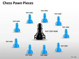 Chess Pawn Pieces ppt 18