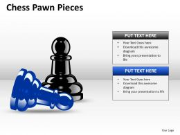 Chess Pawn Pieces ppt 1
