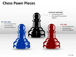 Chess Pawn Pieces ppt 2