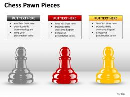 Chess Pawn Pieces ppt 3