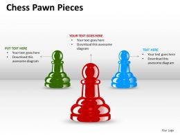 Chess Pawn Pieces ppt 4