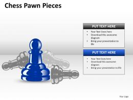Chess Pawn Pieces ppt 5