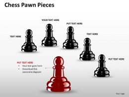 Chess Pawn Pieces ppt 6