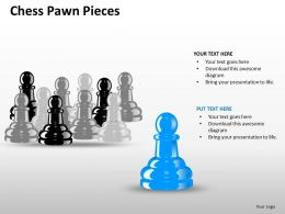 Chess Pawn Pieces ppt 7
