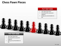 Chess Pawn Pieces ppt 8