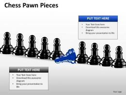 Chess Pawn Pieces ppt 9
