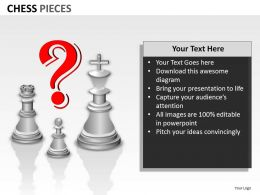 Chess Pieces ppt 11