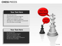 Chess Pieces ppt 12