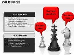 Chess Pieces ppt 13