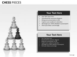 Chess Pieces ppt 14
