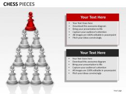 Chess Pieces ppt 15