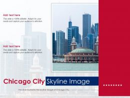 Chicago City Skyline Image Powerpoint Presentation PPT Template