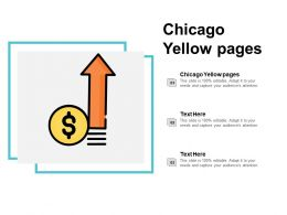 Chicago Yellow Pages Ppt Powerpoint Presentation File Gridlines Cpb