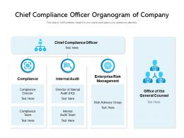 Chief Compliance Officer Organogram Of Company
