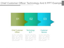 Chief Customer Officer Technology And It Ppt Example