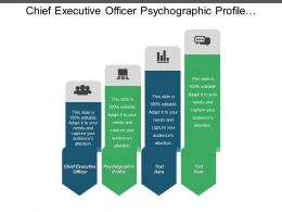 Chief Executive Officer Psychographic Profile Classifying Core Values List Cpb