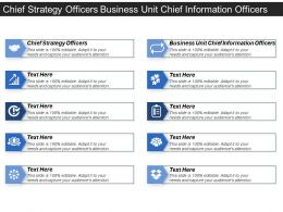 Chief Strategy Officers Business Unit Chief Information Officers