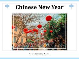 Chinese New Year Celebration Performance Illuminated Festival Fireworks
