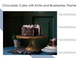 Chocolate Cake With Knife And Blueberries Theme