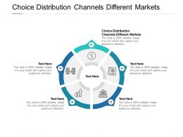Choice Distribution Channels Different Markets Ppt Powerpoint Presentation Introduction Cpb