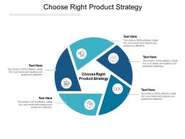 Choose Right Product Strategy Ppt Powerpoint Presentation Pictures Introduction Cpb