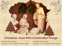 Christmas Jesus Birth Celebration Image