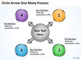 Circle Arrow One Many Process 13