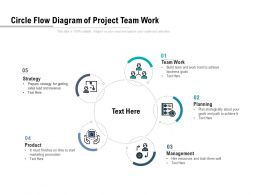 Circle Flow Diagram Of Project Team Work