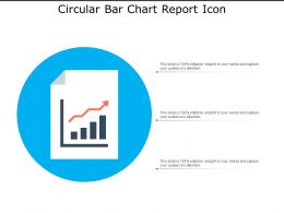 Circular Bar Chart Report Icon