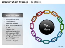 circular_chain_flowchart_process_diagram_12_stages_Slide02