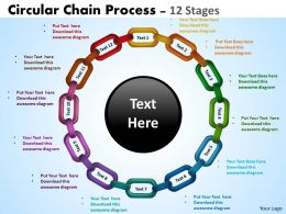 Circular Chain Flowchart Process Flowchart 12 stages
