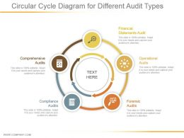 Circular Cycle Diagram For Different Audit Types Powerpoint Templates