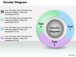 Circular Diagram PowerPoint Template Slide