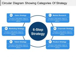Circular Diagram Showing Categories Of Strategy