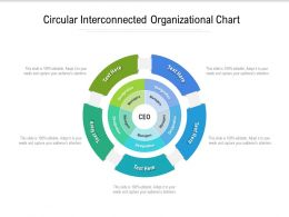 Circular Interconnected Organizational Chart