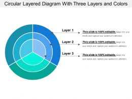 circular_layered_diagram_with_three_layers_and_colors_Slide01