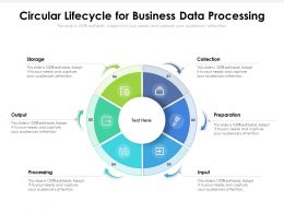 Circular Lifecycle For Business Data Processing