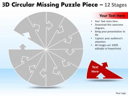 Circular Missing Puzzle Piece 12 Stages